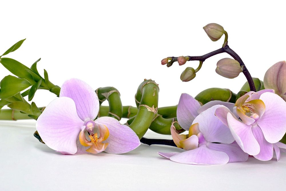 Verwöhnen lassen am Schörhof - Massagen, Kosmetik, Anwendungen
