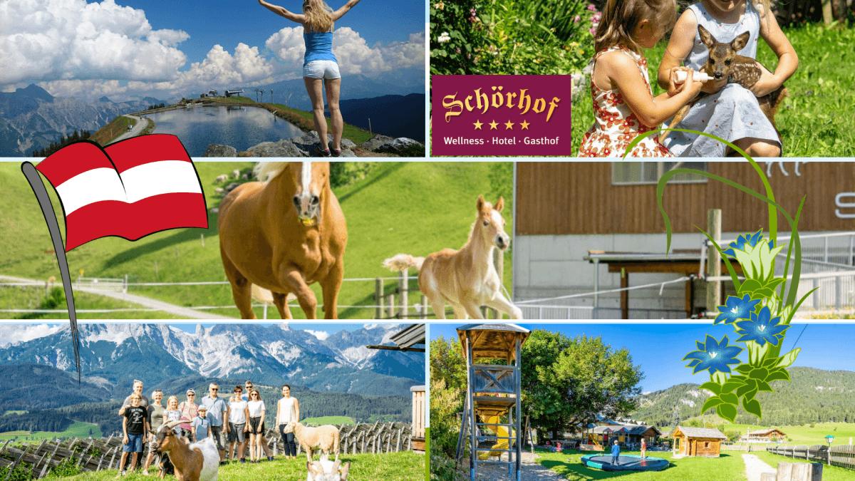 Familienurlaub 2019 am Schörhof