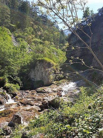 Saalfelden Stoissengraben